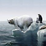 globalnoe-poteplenie-150x150 К вопросу выбора нужного типа линейного теплового извещателя